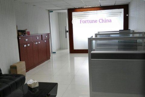 Fortune Global China